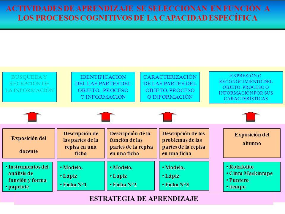 ACTIVIDADES DE APRENDIZAJE SE SELECCIONAN EN FUNCIÓN A LOS PROCESOS COGNITIVOS DE LA CAPACIDAD ESPECÍFICA