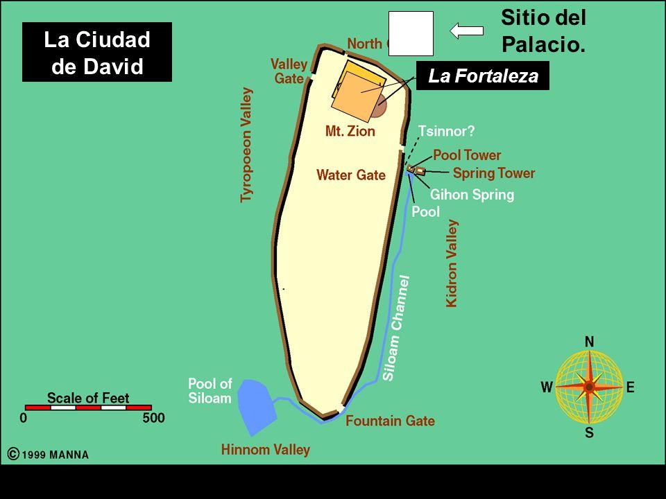 Sitio del Palacio. La Ciudad de David