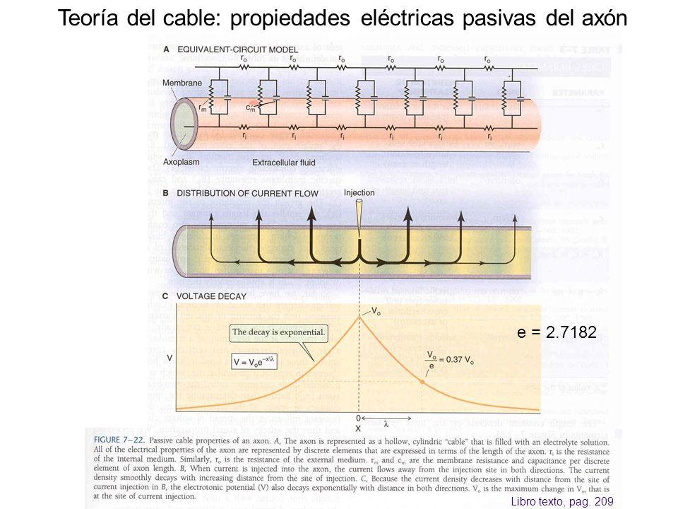 Teoría del cable: propiedades eléctricas pasivas del axón