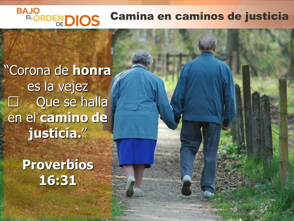 Camina en caminos de justicia