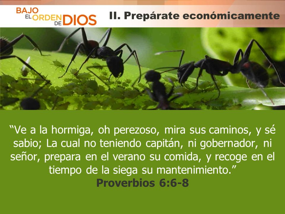 II. Prepárate económicamente