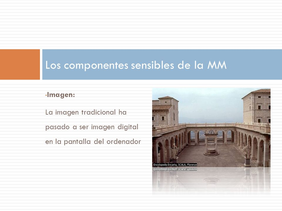 Los componentes sensibles de la MM