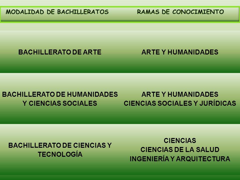 BACHILLERATO DE HUMANIDADES Y CIENCIAS SOCIALES
