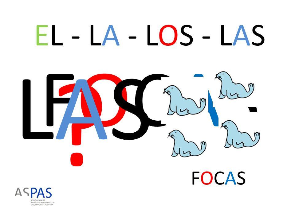 EL - LA - LOS - LAS LAS FOCAS FOCAS