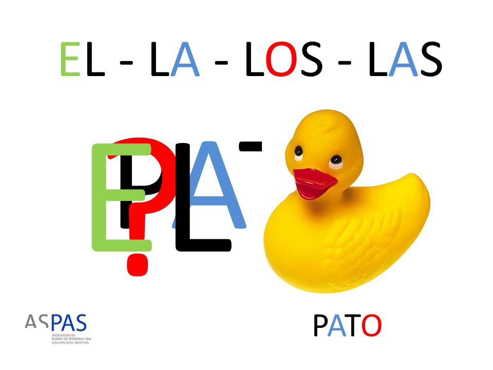 EL - LA - LOS - LAS EL PATO PATO