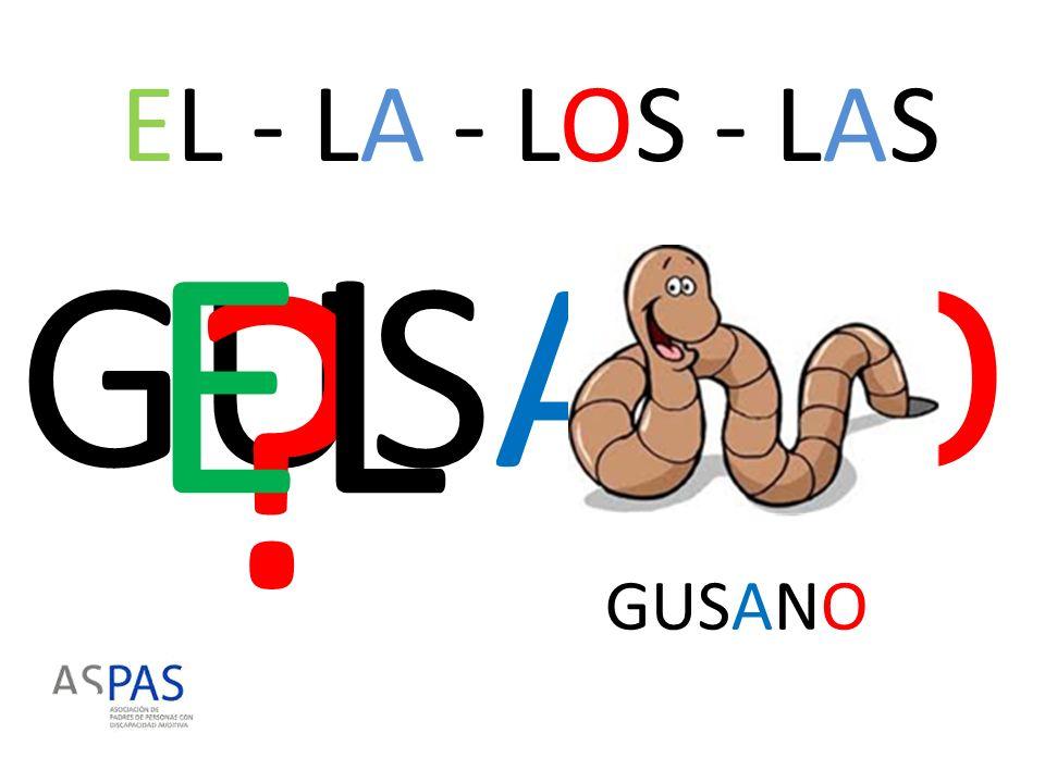 EL - LA - LOS - LAS EL GUSANO GUSANO