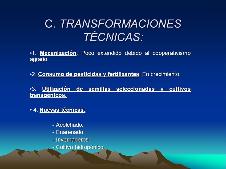 C. TRANSFORMACIONES TÉCNICAS: