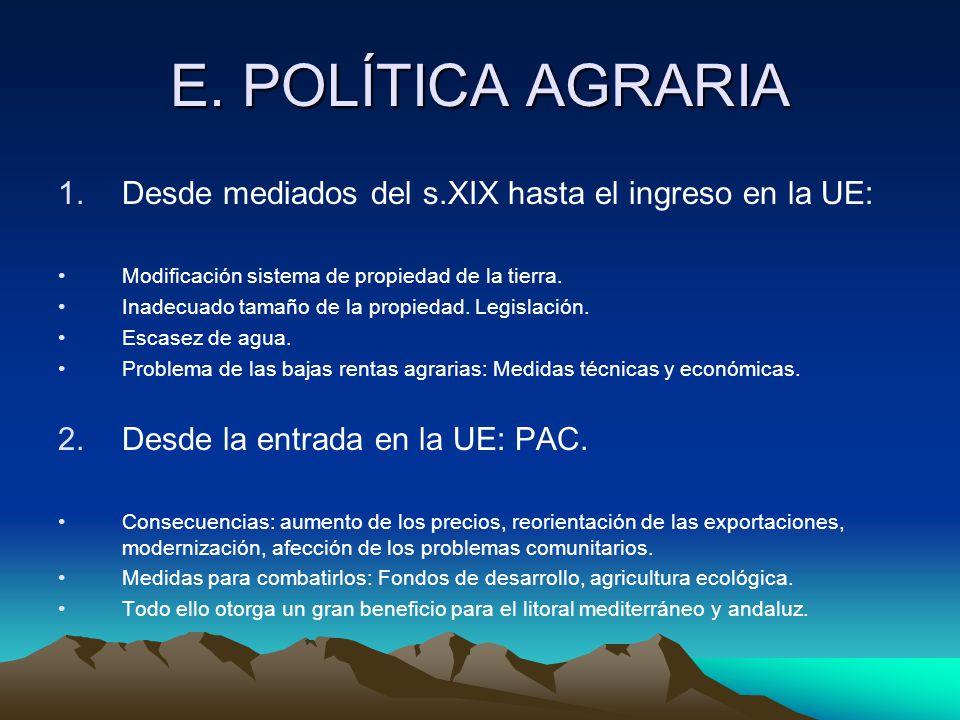 E. POLÍTICA AGRARIA Desde mediados del s.XIX hasta el ingreso en la UE: Modificación sistema de propiedad de la tierra.