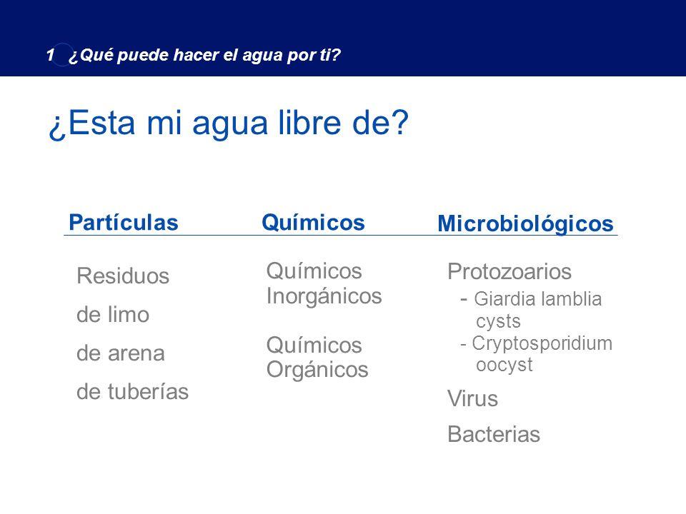 ¿Esta mi agua libre de Partículas Químicos Microbiológicos Residuos