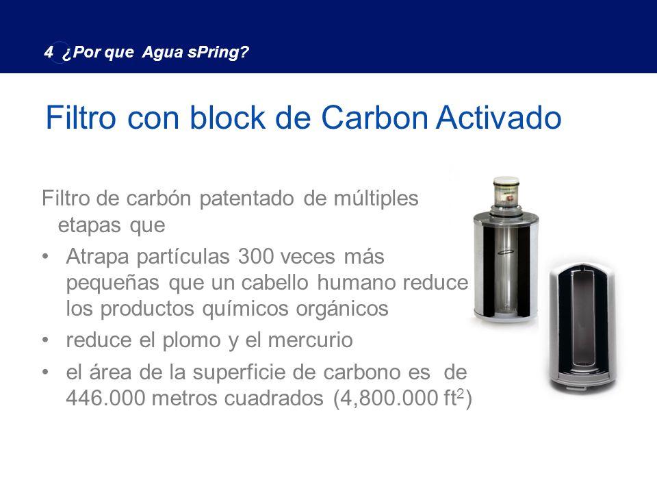 Filtro con block de Carbon Activado