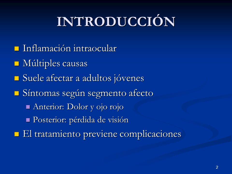 INTRODUCCIÓN Inflamación intraocular Múltiples causas