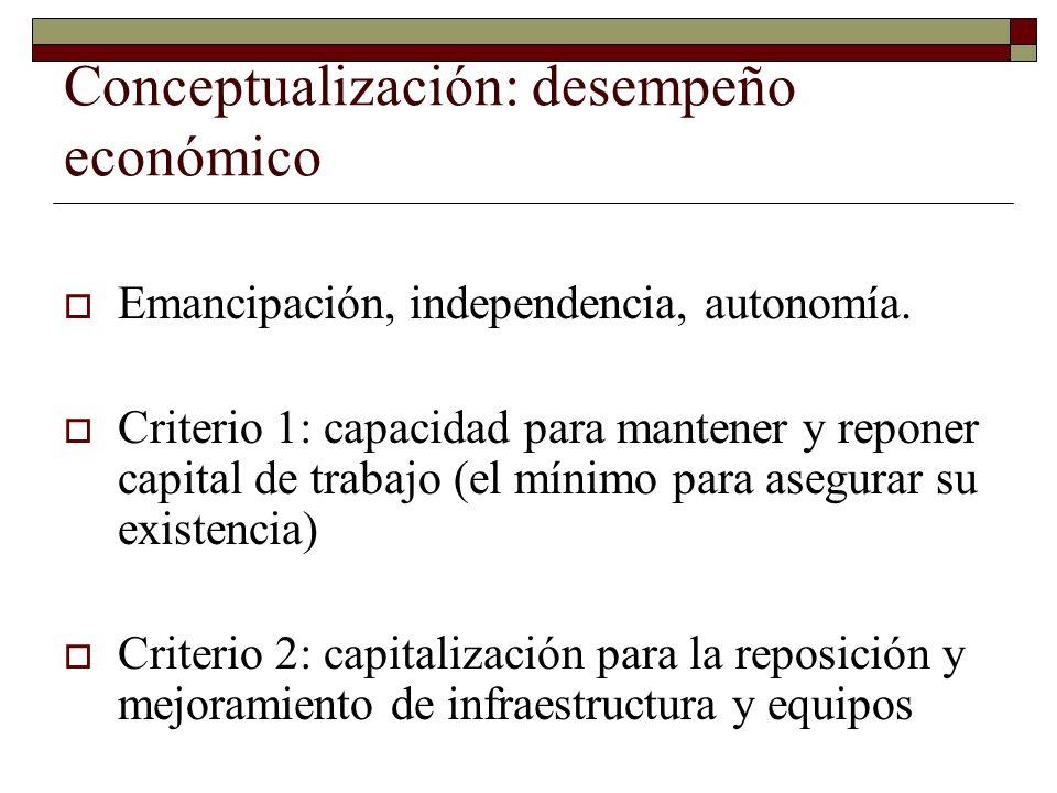 Conceptualización: desempeño económico