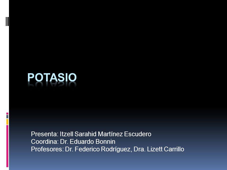Potasio Presenta: Itzell Sarahid Martínez Escudero