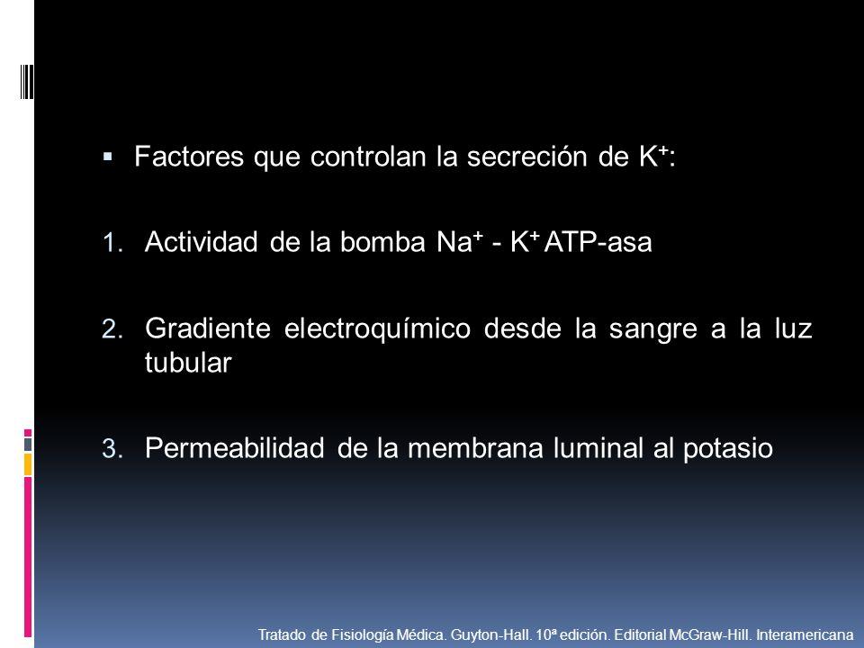 Factores que controlan la secreción de K+: