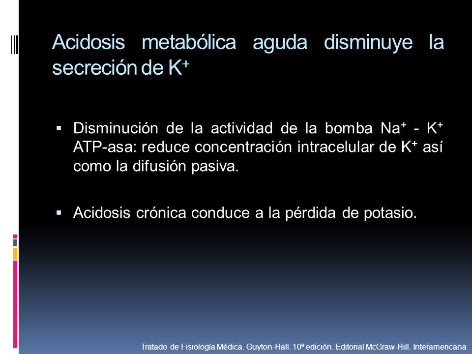 Acidosis metabólica aguda disminuye la secreción de K+