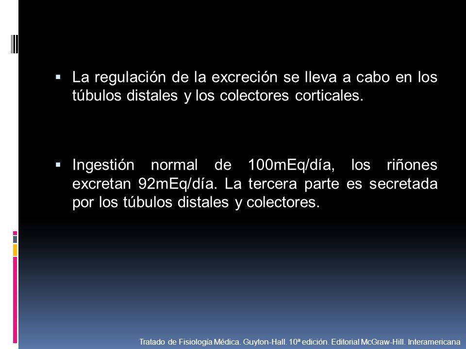 La regulación de la excreción se lleva a cabo en los túbulos distales y los colectores corticales.