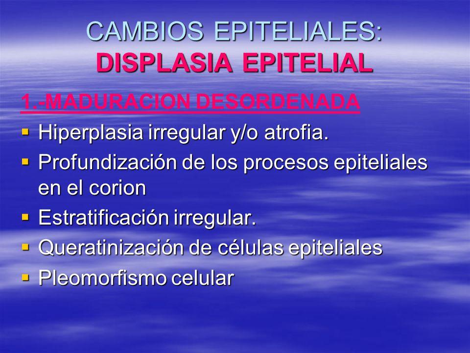 CAMBIOS EPITELIALES: DISPLASIA EPITELIAL