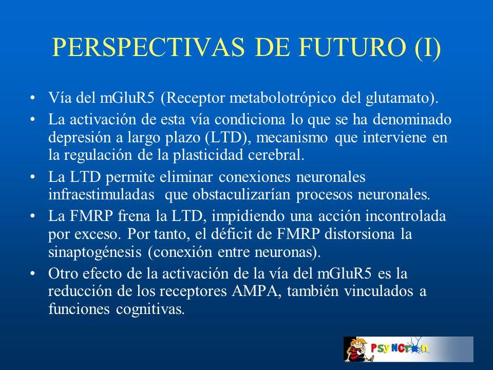 PERSPECTIVAS DE FUTURO (I)