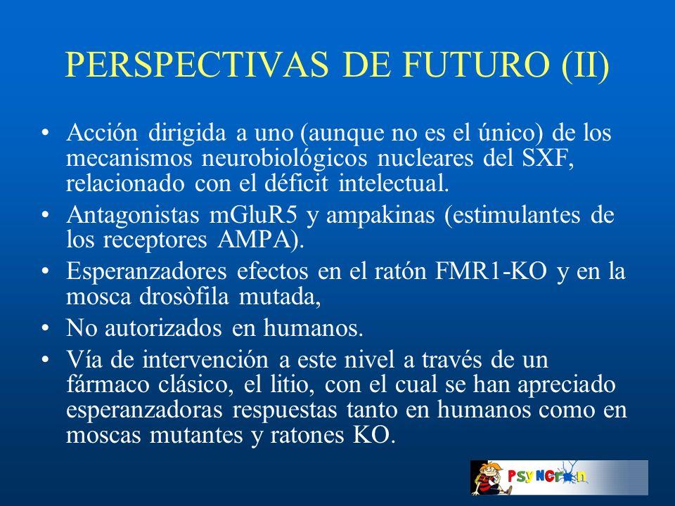PERSPECTIVAS DE FUTURO (II)