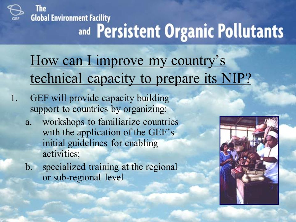 How can I improve my country's technical capacity to prepare its NIP