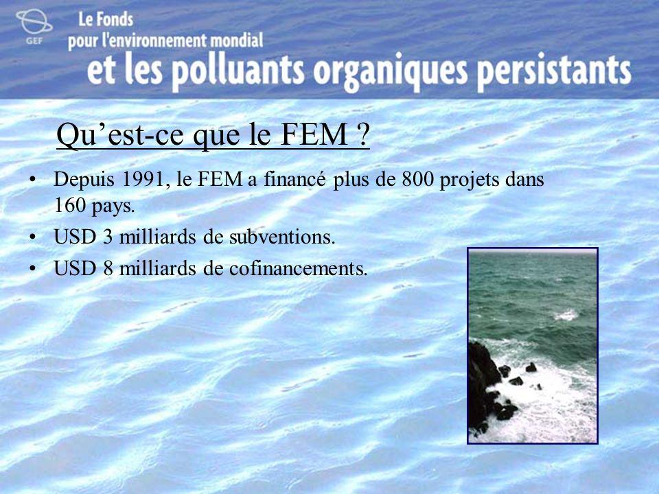 Qu'est-ce que le FEM Depuis 1991, le FEM a financé plus de 800 projets dans 160 pays. USD 3 milliards de subventions.