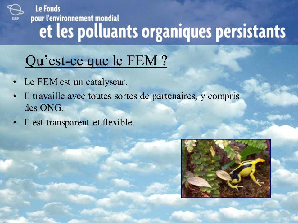 Qu'est-ce que le FEM Le FEM est un catalyseur.