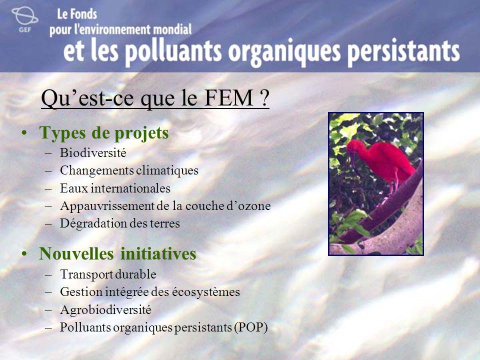 Qu'est-ce que le FEM Types de projets Nouvelles initiatives