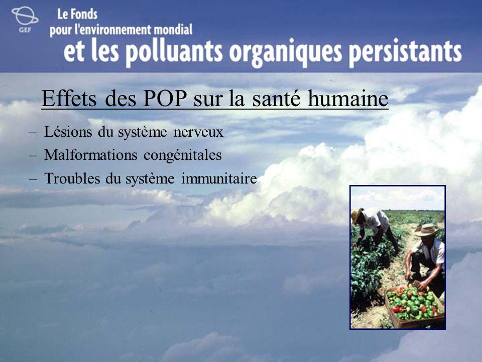 Effets des POP sur la santé humaine