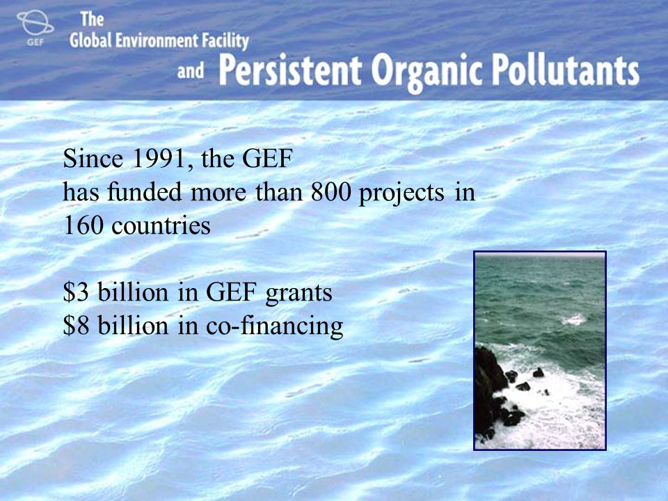 Since 1991, the GEF has funded more than 800 projects in 160 countries $3 billion in GEF grants $8 billion in co-financing.