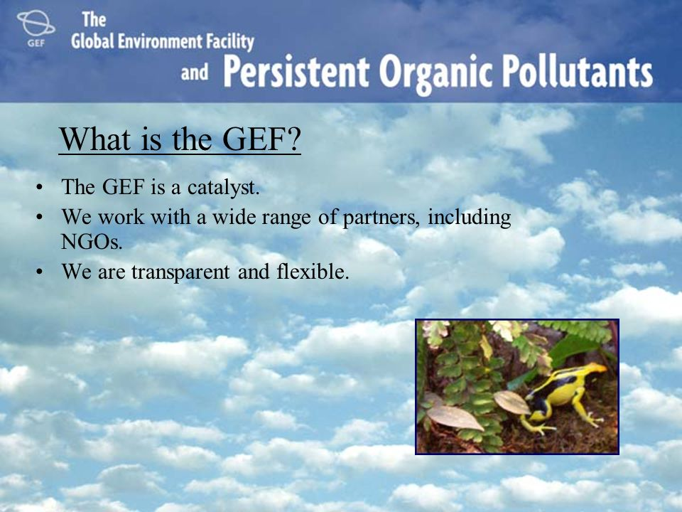 What is the GEF The GEF is a catalyst.