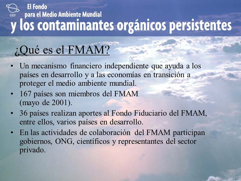 ¿Qué es el FMAM