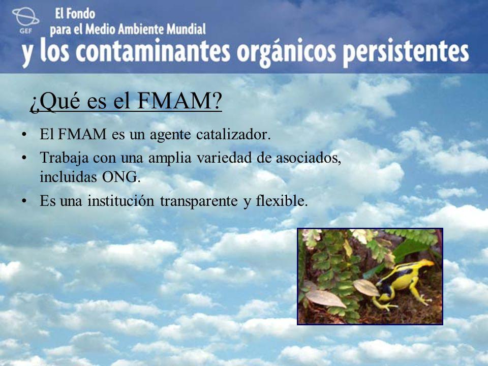 ¿Qué es el FMAM El FMAM es un agente catalizador.