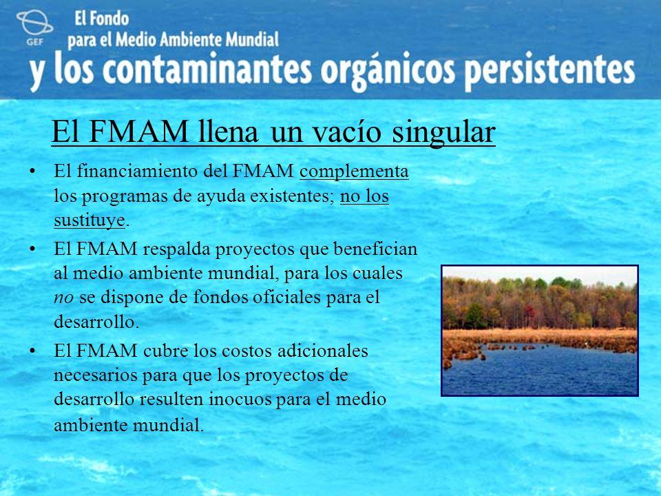 El FMAM llena un vacío singular