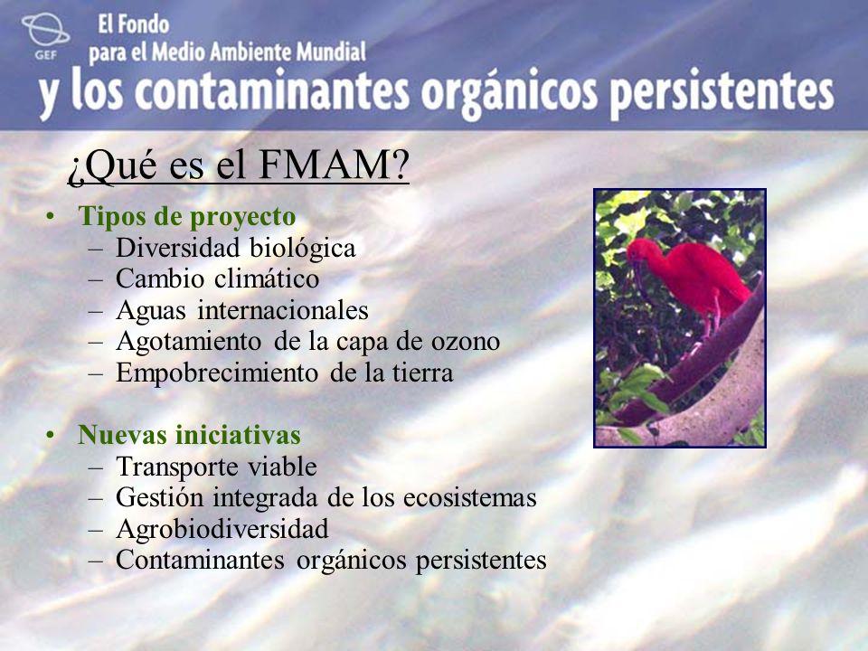 ¿Qué es el FMAM Tipos de proyecto Diversidad biológica