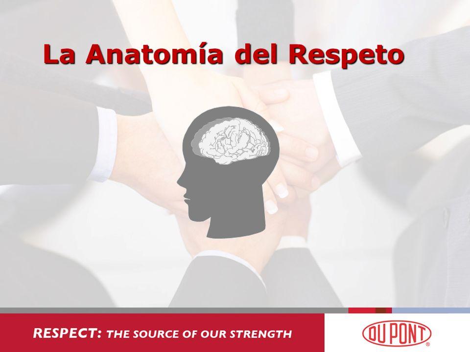 La Anatomía del Respeto
