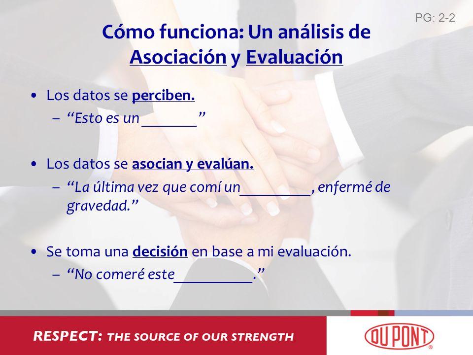 Cómo funciona: Un análisis de Asociación y Evaluación
