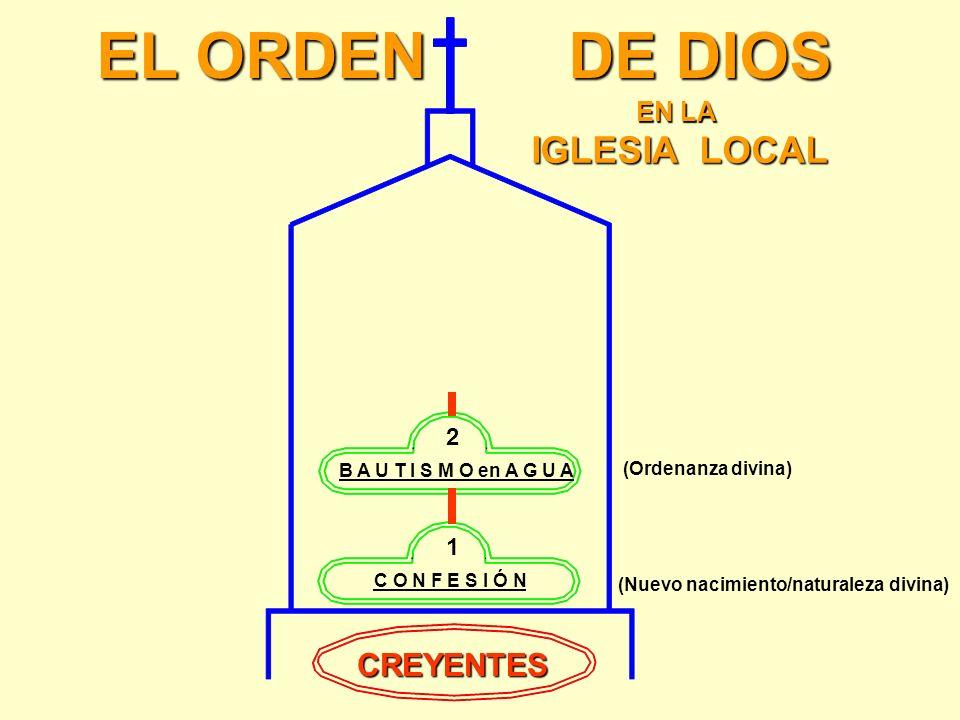 EL ORDEN DE DIOS IGLESIA LOCAL CREYENTES EN LA 2 1