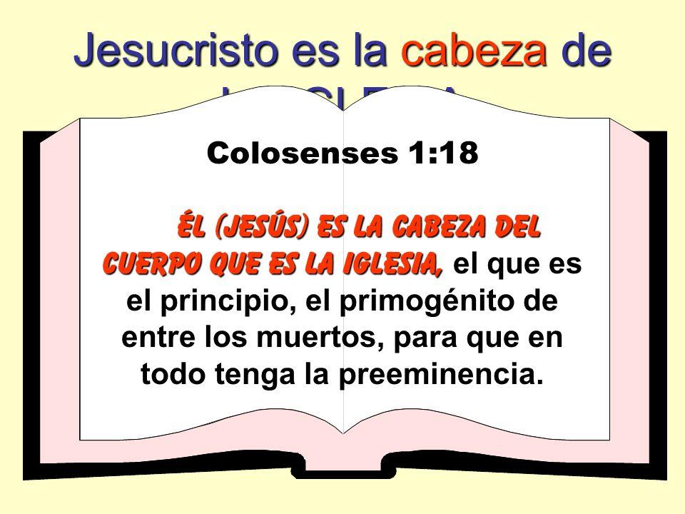 Jesucristo es la cabeza de LA IGLESIA