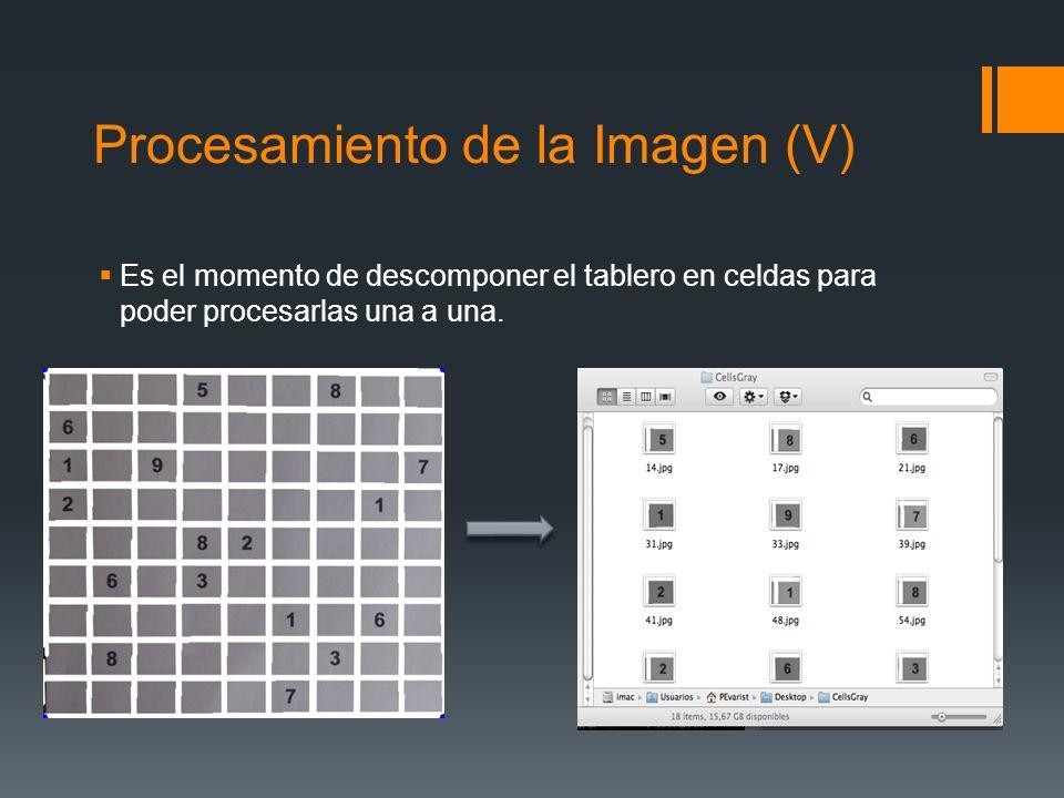 Procesamiento de la Imagen (V)