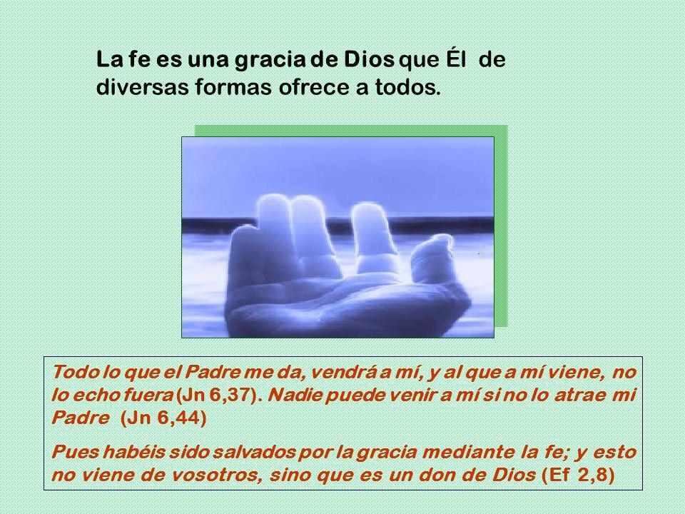 La fe es una gracia de Dios que Él de diversas formas ofrece a todos.