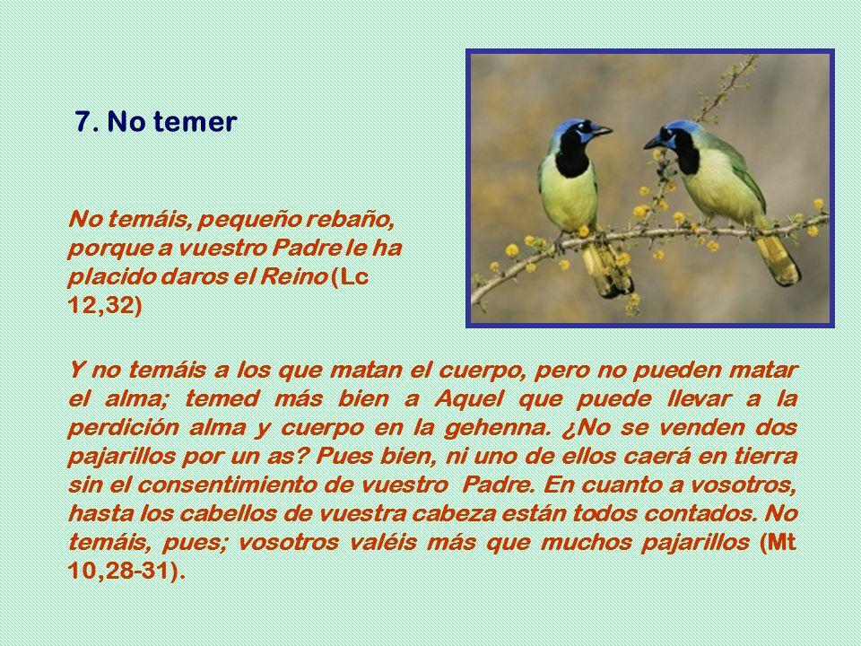 7. No temer No temáis, pequeño rebaño, porque a vuestro Padre le ha placido daros el Reino (Lc 12,32)