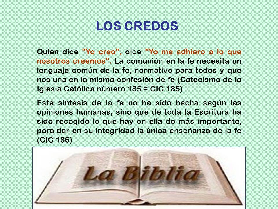 LOS CREDOS