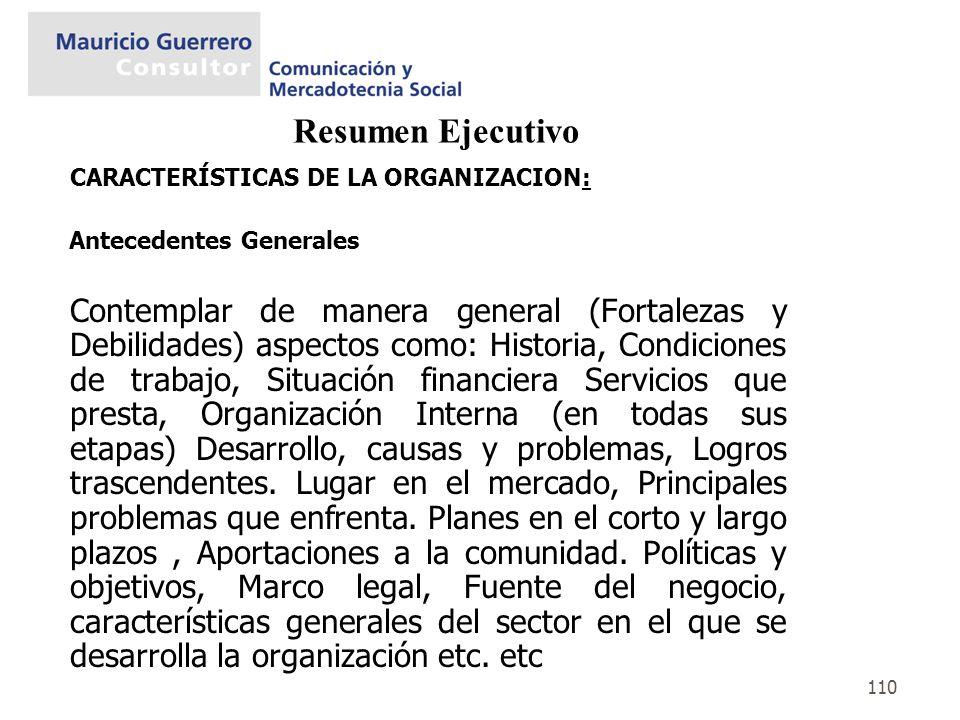 Resumen Ejecutivo CARACTERÍSTICAS DE LA ORGANIZACION: Antecedentes Generales.