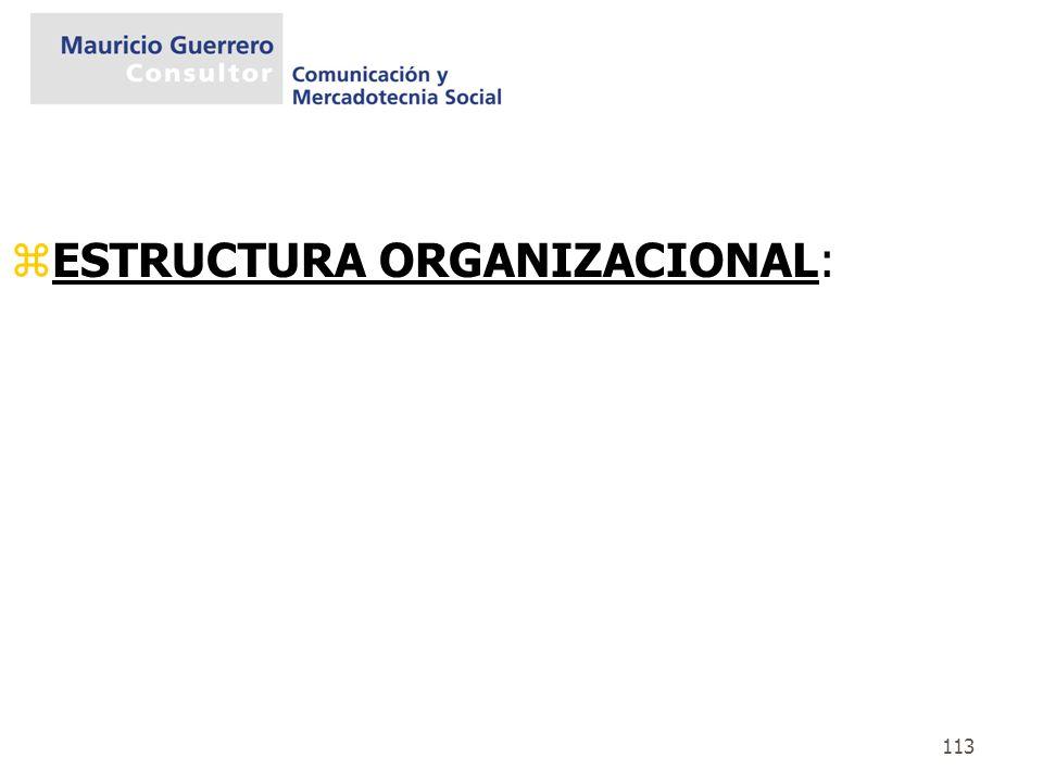 ESTRUCTURA ORGANIZACIONAL: