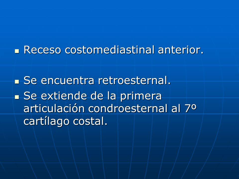Receso costomediastinal anterior.