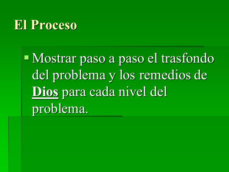 El ProcesoMostrar paso a paso el trasfondo del problema y los remedios de Dios para cada nivel del problema.