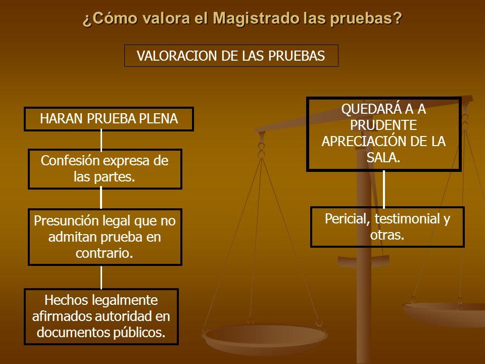 ¿Cómo valora el Magistrado las pruebas