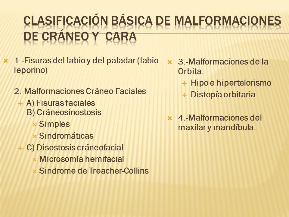 CLASIFICACIÓN BÁSICA DE MALFORMACIONES DE CRÁNEO Y CARA