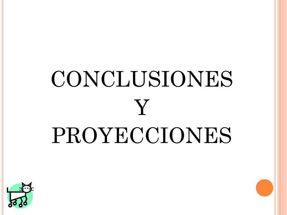 CONCLUSIONES Y PROYECCIONES