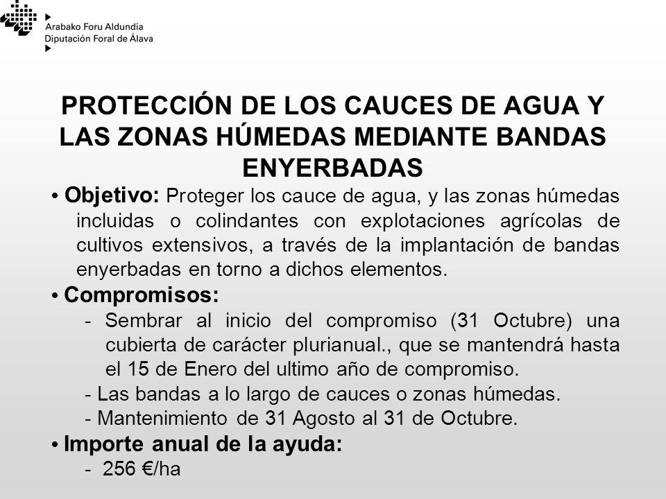 23/03/2017 PROTECCIÓN DE LOS CAUCES DE AGUA Y LAS ZONAS HÚMEDAS MEDIANTE BANDAS ENYERBADAS.